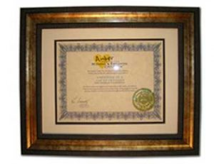 Certificate of Appreciation - 2009